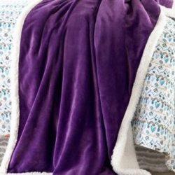Purple Plum Sherpa Plush Throw