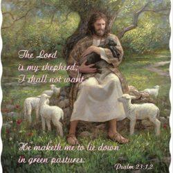 Lord is my shepherd DQT5404 50×60