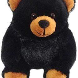 42335 black bear