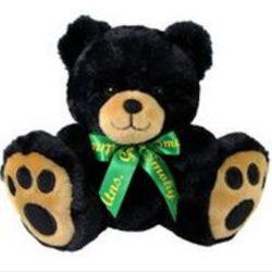 44561 black bear