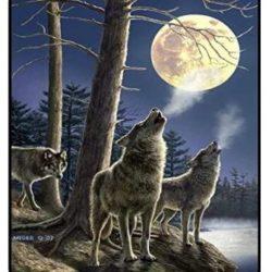 MEGER WOLF MOON